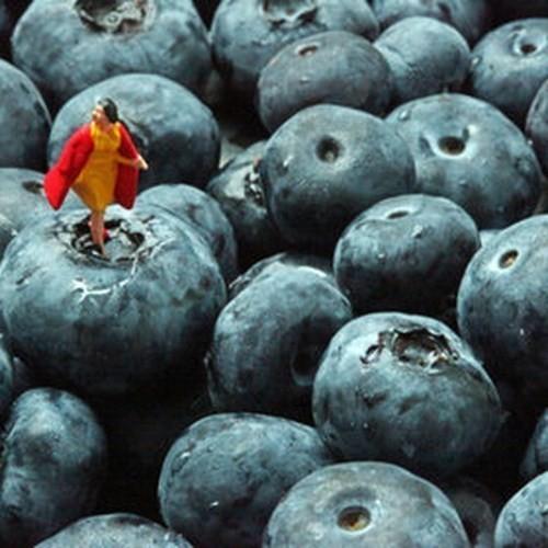 """Изображение 1. Серия """"Неравенство"""" от Кристофера Боффоли.. Изображение № 1."""