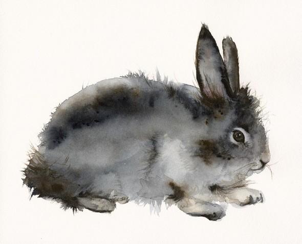 Изображение 52. Amber Alexander - животные, сияющие акварелью.. Изображение № 50.