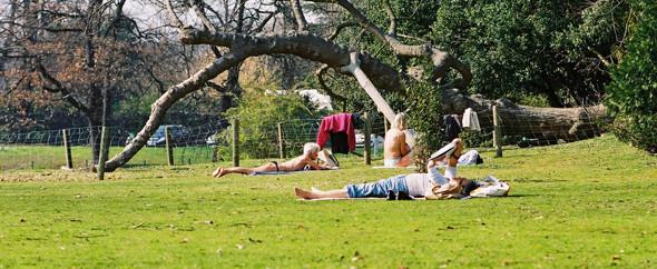 Изображение 29. Париж: сады и парки.. Изображение № 31.
