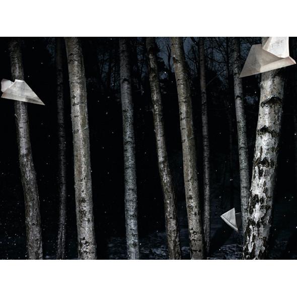 Фотограф: Карл Кляйнер. Изображение № 41.