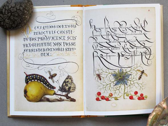 9 известных дизайнеров и художников советуют must-read книги по искусству. Изображение № 24.