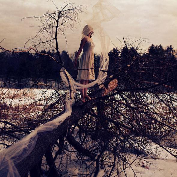 Sarah Ann Loreth Photography. Изображение № 20.