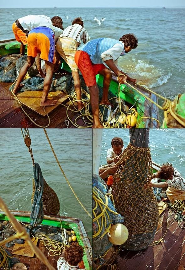 Shrimp boat MFR 646 DF GOA - Non stop. Изображение № 32.