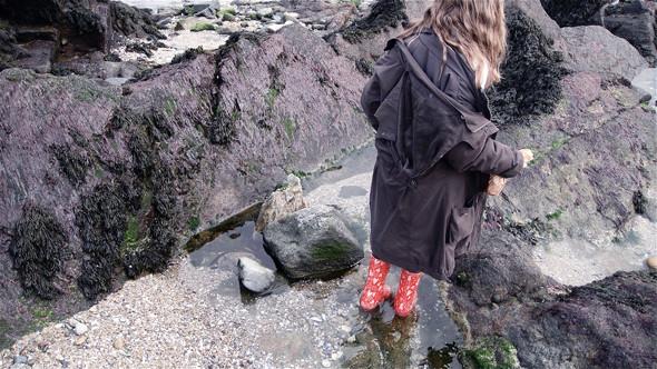 Скалы во время отлива. Изображение № 22.