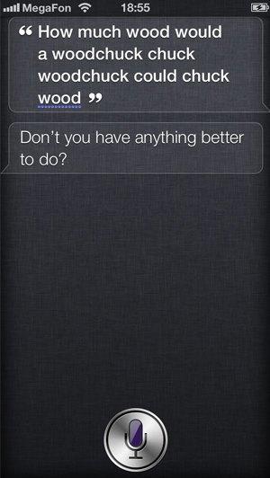 10 незаметных функций  и интерфейсных  решений Siri. Изображение № 7.
