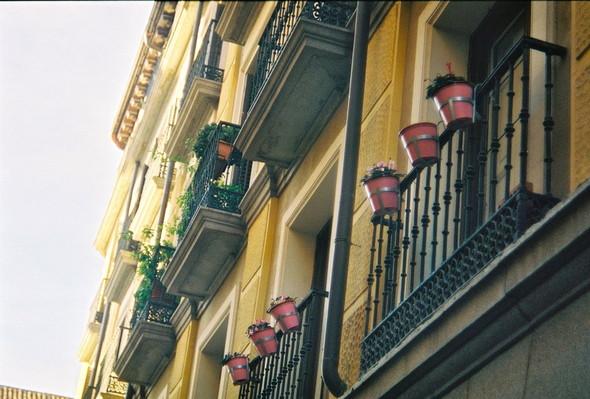 Madrid 2012. Изображение № 19.