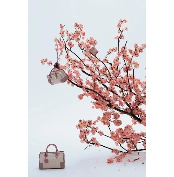 Изображение 4. Лукбук: Loewe Cherry Blossom.. Изображение № 4.