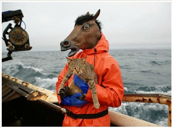 Corey Arnold. Морская фотография. Изображение № 5.
