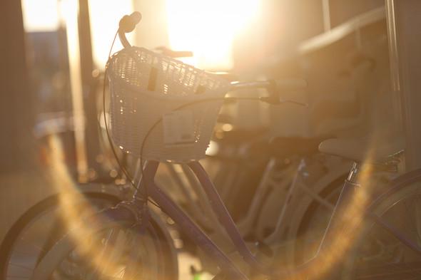 Electra Bike Hub. Изображение № 10.