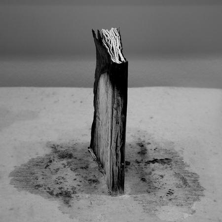 Туманные фотографии. Изображение № 16.