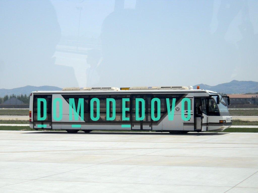 Редизайн: Новый логотип Домодедово. Изображение № 15.