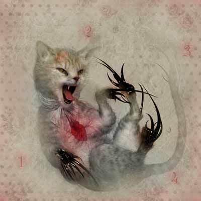 Кошки, девушки, острые ногти. Изображение № 2.