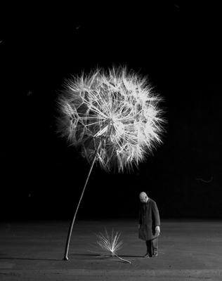 Gilbert Garcin Artiste Photographe aMarseille. Изображение № 5.