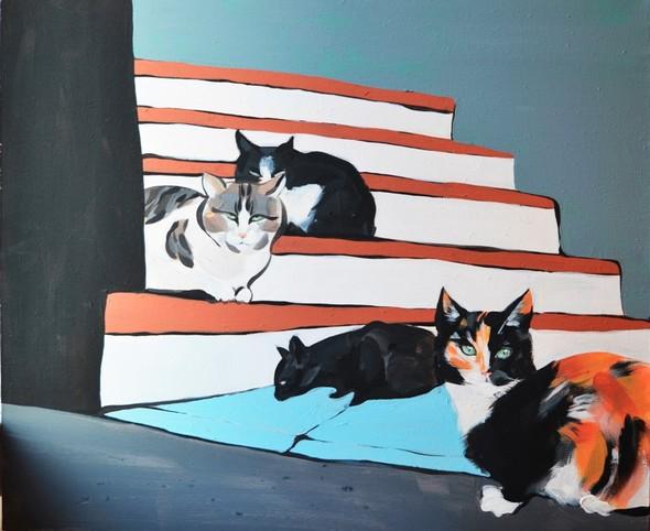 Кошки. Изображение №1.