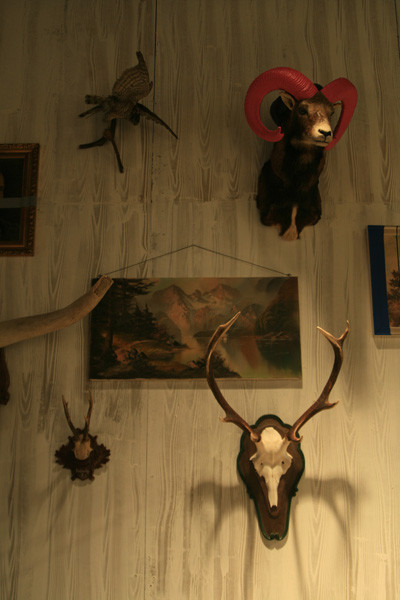Marc O'Polo украсили своё пространство рогами, коврами и деревом. Изображение №11.