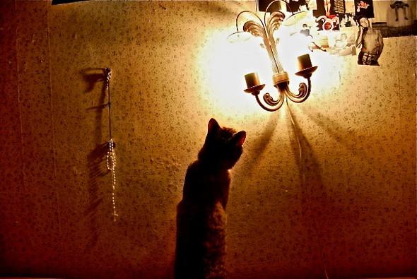 Киевские общежития: художник должен быть холодным?. Изображение № 12.