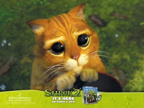 """Английский киноклуб по фильму """" Shrek 2"""". Изображение № 4."""