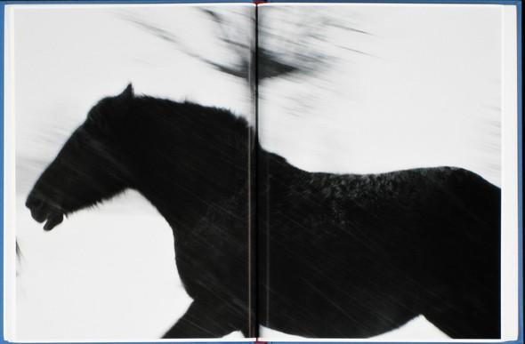9 атмосферных фотоальбомов о зиме. Изображение № 24.