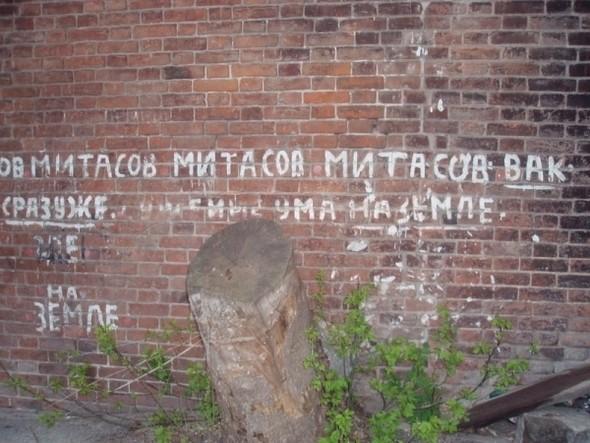 Изображение 15. Олег Митасов и его квартира.. Изображение № 15.