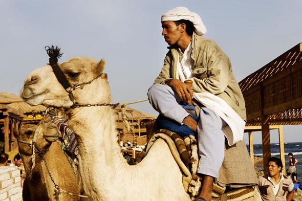 Изображение 95. Egypt (Dahab).. Изображение № 95.