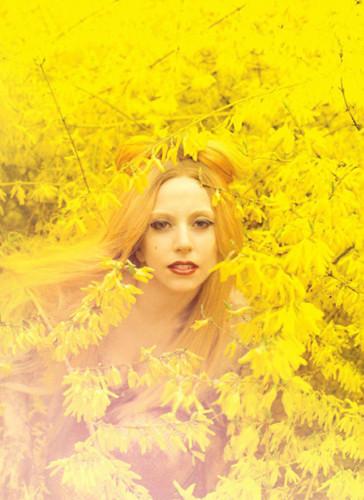 Леди Гага. Изображение № 119.