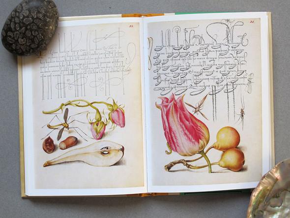 9 известных дизайнеров и художников советуют must-read книги по искусству. Изображение № 27.