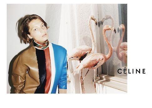 Кампании: Balenciaga, Celine, Dolce & Gabbana и другие. Изображение № 8.