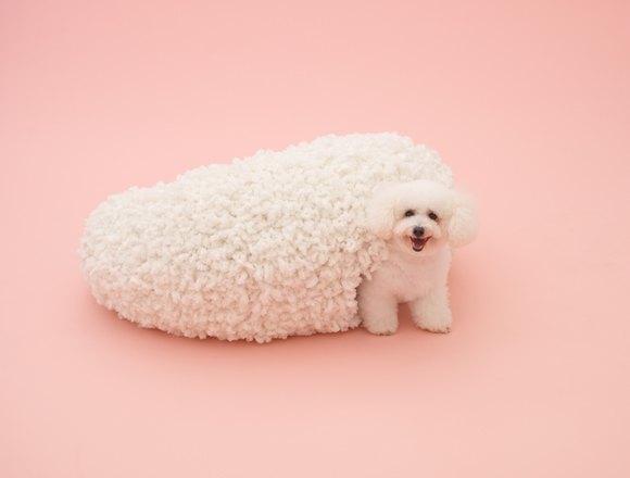 В Калифорнии открылась выставка «Архитектура для собак». Изображение № 2.
