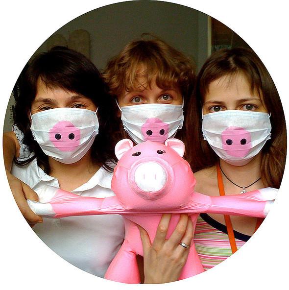 Уходи свиной грипп, мыхорошие. Изображение № 4.