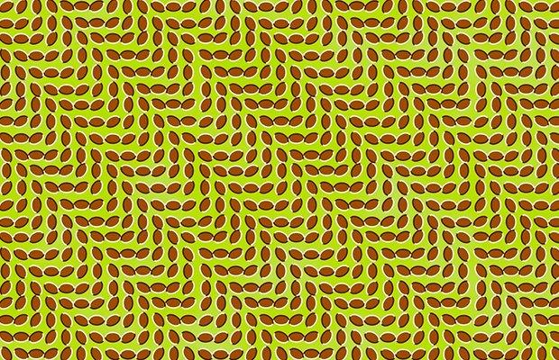Вопрос учёному: Чем объясняются оптические иллюзии?. Изображение № 5.