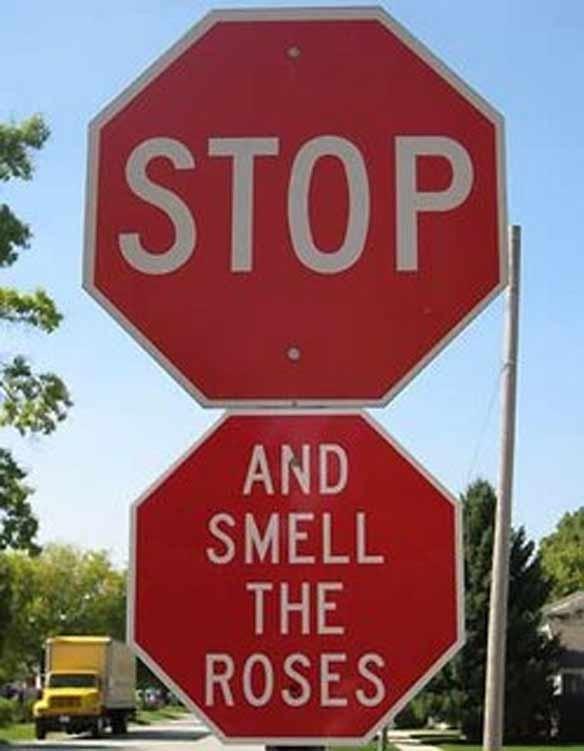STOP SIGN. Изображение № 5.
