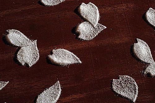 MOTOI YAMAMOTO – повелитель соли. Изображение № 3.