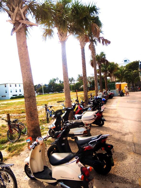 Спешите жить медленно. Ки-Уэст (Key West). Изображение № 8.