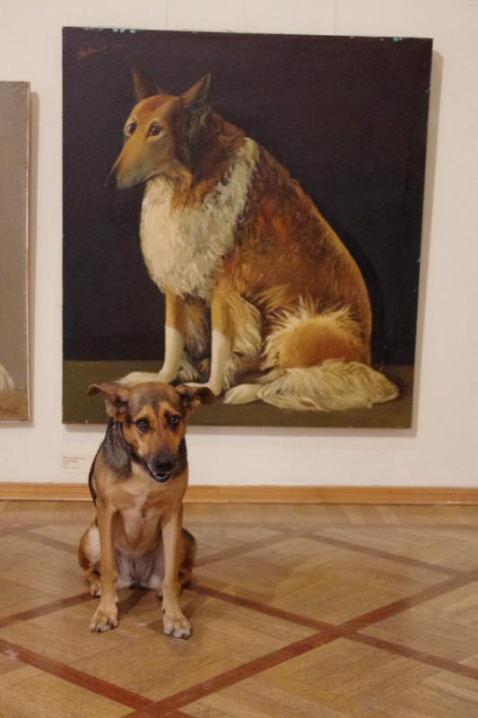 Движение собачьего арта в Петербурге. Изображение № 2.