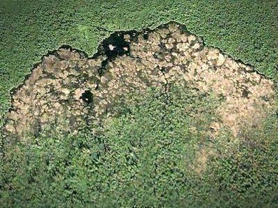 Из космоса видно. гигантское сооружение бобров. Изображение № 1.