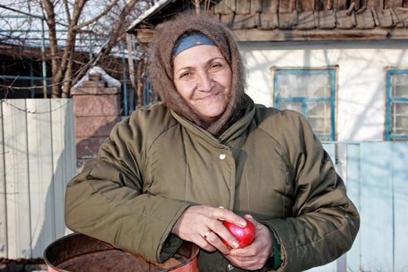 Алматинские яблочки – миф?. Изображение № 1.
