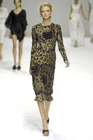 Dolce&Gabbana. Изображение № 9.