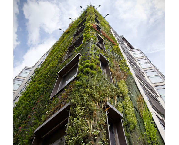 Зеленая архитектура. Изображение № 24.