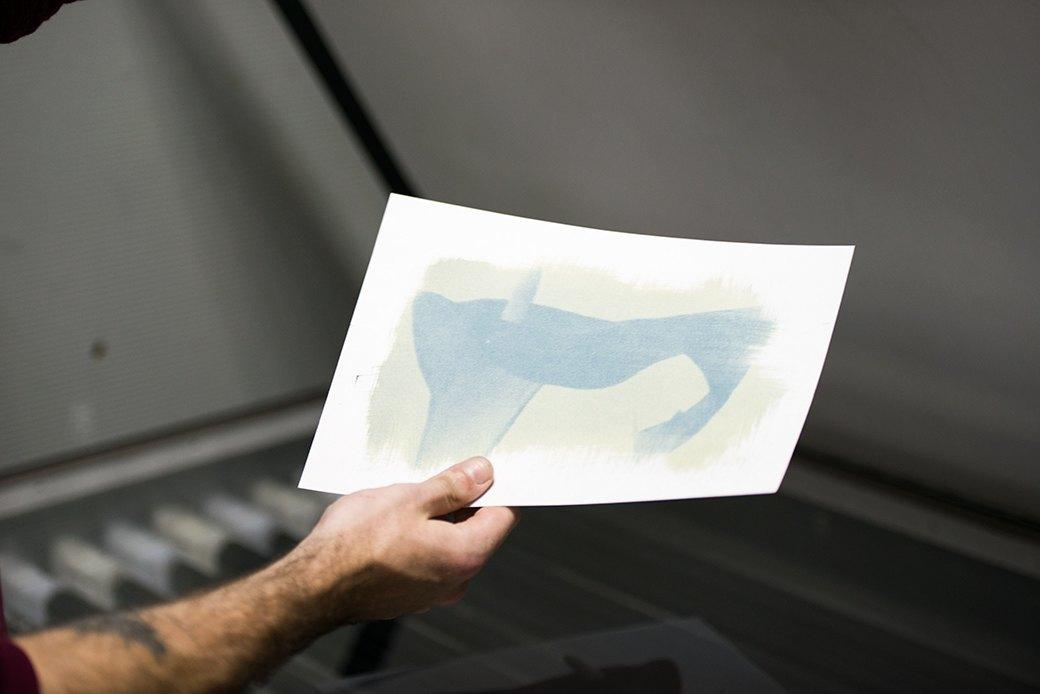 Цианотипия:  Как напечатать фотографию своими руками. Изображение № 25.