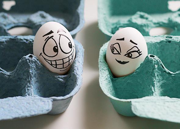 Удивительная жизнь яиц. Изображение № 21.