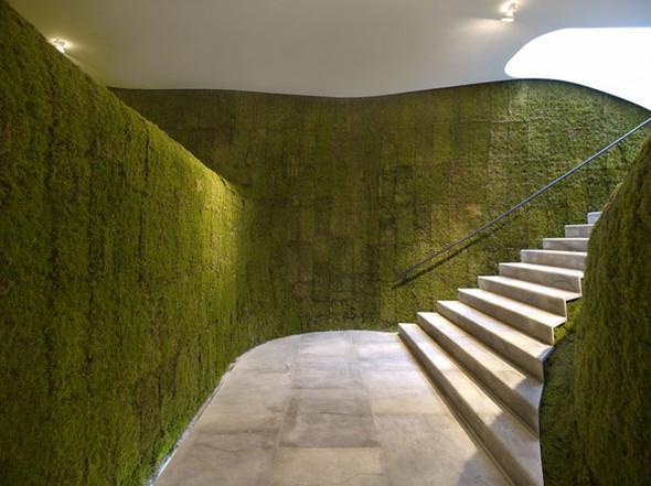 Диалог с природой: вертикальные сады. Изображение № 15.