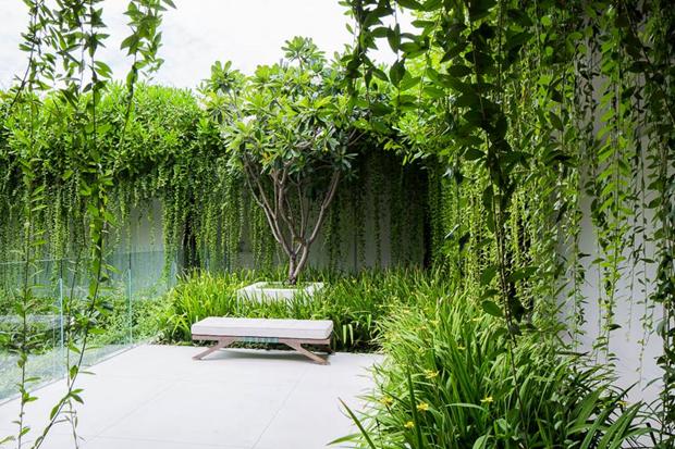 Архитектура дня: белый спа-центр во Вьетнаме с растениями на фасаде. Изображение № 14.