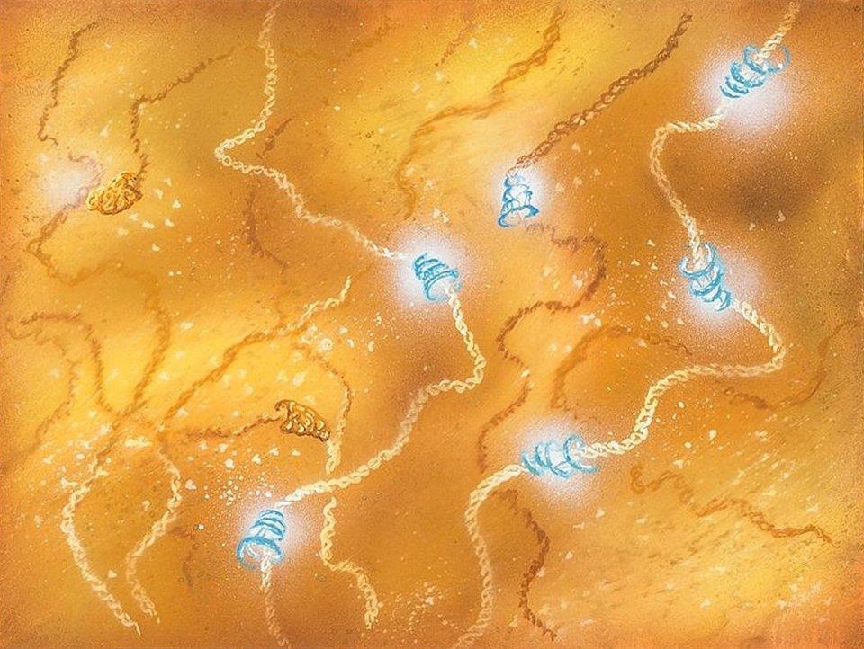 Галерея: иллюстрации ксамому известному шоу окосмосе . Изображение № 8.