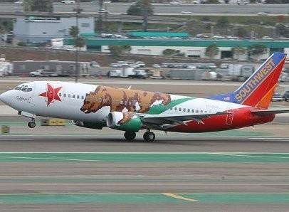 Оригинальное оформление самолетов. Изображение №6.