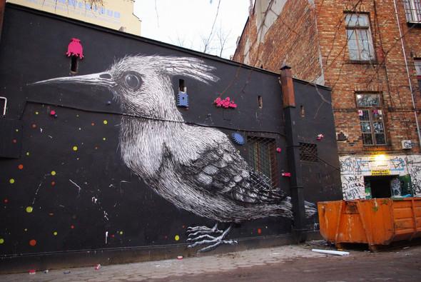 Животный стрит-арт от бельгийского граффитчика ROA. Изображение № 19.
