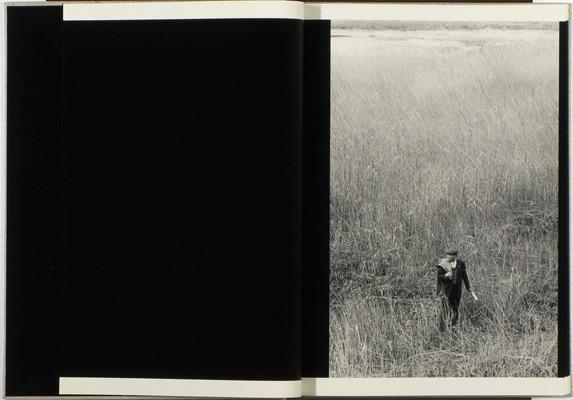 Закон и беспорядок: 10 фотоальбомов о преступниках и преступлениях. Изображение № 129.
