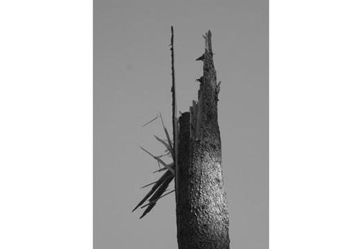 Фотографы, сделавшие проекты на гранты, — George Shaw и Lars Breuer. Изображение № 22.