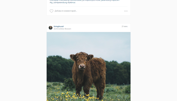 Instagram обновил дизайн веб-версии. Изображение № 4.
