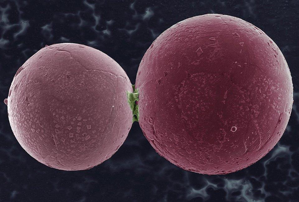 10 ответов  на важные вопросы  о нанотехнологиях  и Роснано. Изображение № 3.