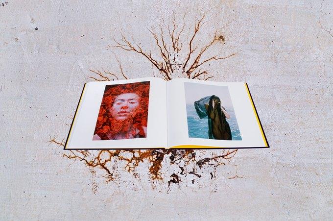 Фотографы Synchrodogs выпустили книгу. Изображение № 3.